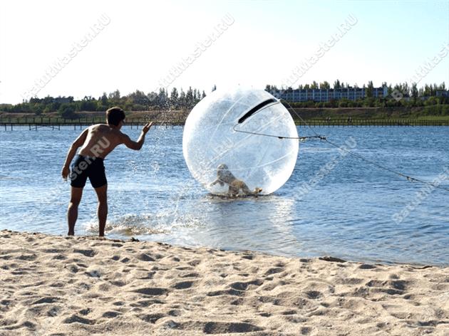 водный шар0102